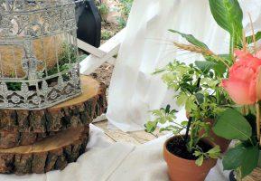 Буфетъ организовал выездной свадебный фуршет